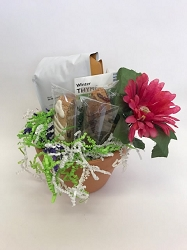 Mother's Day Gift Idea - Biscotti and Coffee in a Flower Pot